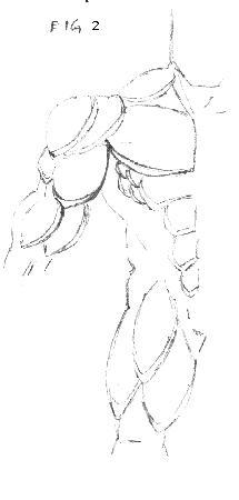 corpo 2